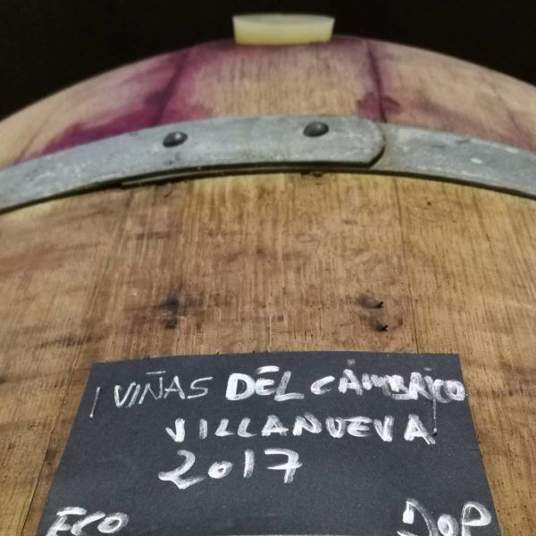 Viña-Cambrico-Blog-Pintan-Copas-8